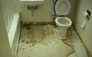 cách chống thấm sàn nhà vệ sinh bằng sika
